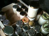 Production de miel de colza