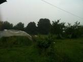 Pluie torrentielle sur serre mare