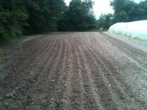 Plantation de pdt - sillons