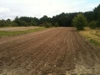 Grand champs - plantation de pdt