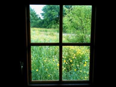 Par la fenêtre de la cabane...