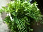Ciboulette - coriandre - persil