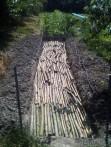 Butte - apport de rondins de bois