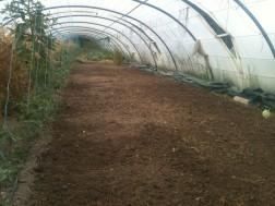 Préparation terrain pour engrais vert