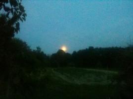 Levé de pleine lune