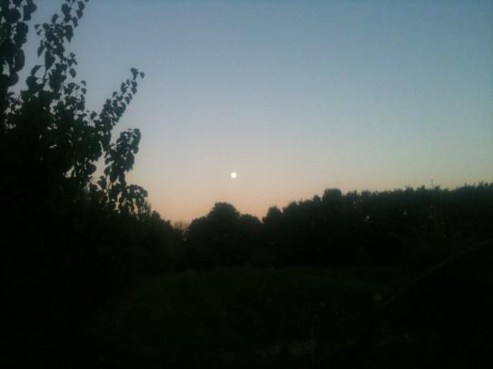 Lune d'août