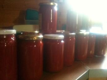 22 bocaux de coulis de tomates