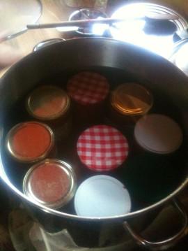 Stérilisation coulis de tomates