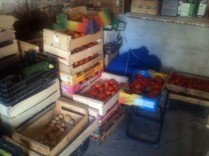 Stockage tomates and more