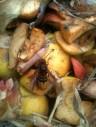 Frelon sur pomme