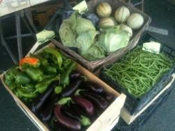 melons, choux, aubergines, poivrons, haricots