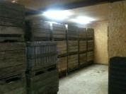 Cellier : paddocks pour pdt et courges