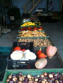 Ventes à la ferme ; préparation du marché