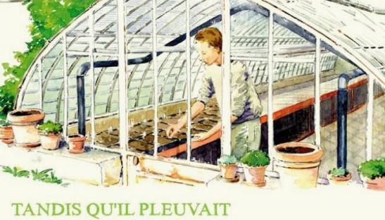 micro ferme - microferme - micro-ferme - semis de plantes aromatiques et de tomates sous serre