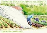 microferme maraîchère Bourdaisière - premières récoltes