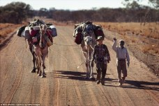 Travelling companions: Mr. Eddie, a Pitjantjatjara man, was going to walk with Robyn for two days but ended up staying with her for three weeks and 200 miles of her journey. She said 'I still think of our three weeks together on the trail as the heart of my entire journey'